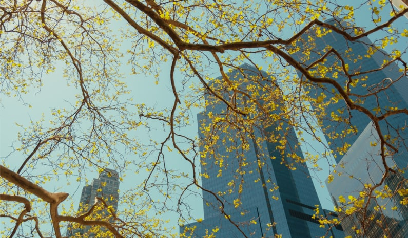 ESG na prática: iniciativas de grandes empresas para promover impacto social e ambiental